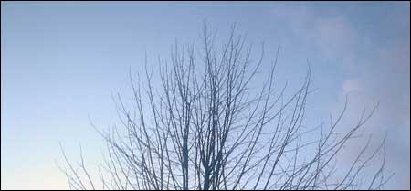 blauwe lucht om 19.30u