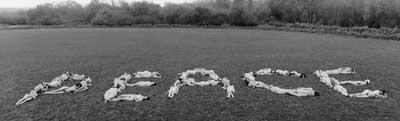 50 naked women spelling out the word peace - klik voor groter beeld